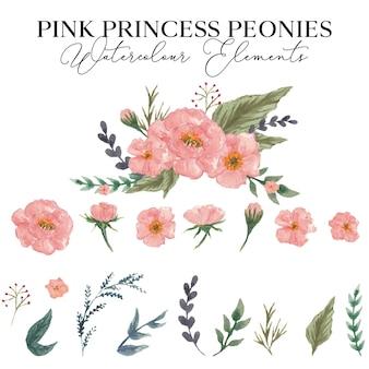 Różowe piwonie księżniczki elementy akwarela