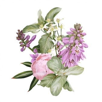 Różowe piwonie, kwiaty hosty, powojnik i gałąź borówki