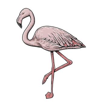 Różowe ręcznie rysowane egzotyczne zwierzęta flamingo ilustracja na białym tle