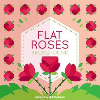 Różowe tło z różami w płaskim stylu