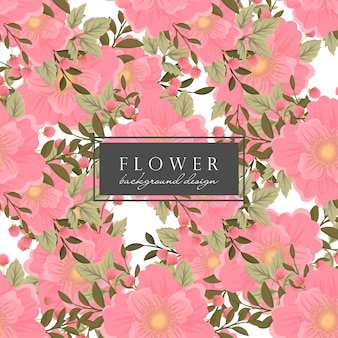 Różowego kwiecistego tła bezszwowy wzór