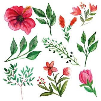 Różowy hibiskus z liśćmi i dodatkowymi kwiatami