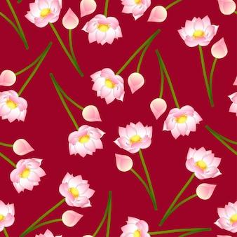 Różowy indiański lotos na czerwonym tle.