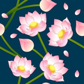Różowy indiański lotos na indygowym błękitnym tle