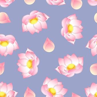 Różowy indiański lotos na purpurowym tle