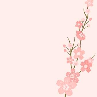 Różowy kwiat wiśni tło wektor