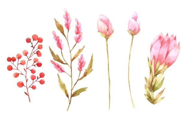 Różowy kwiat zestaw ręcznie malowanej kolekcji akwareli do projektowania
