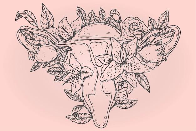 Różowy żeński układ rozrodczy