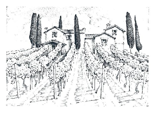 Rustykalna winnica. wiejski krajobraz z domami. słoneczny toskania tło. pola i drzewa cyprysowe. żniwa i stogi siana.