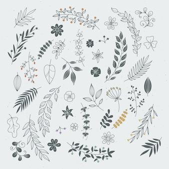Rustykalne ręcznie rysowane ozdoby z gałęzi i liści. wektorowe kwieciste ramy i granicy
