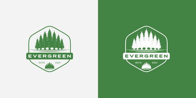 Rustykalne vintage wiecznie zielone, sosny, świerk, godło logo drzewa cedrowego
