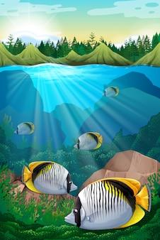 Ryba pływająca pod oceanem