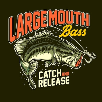Ryby basowe