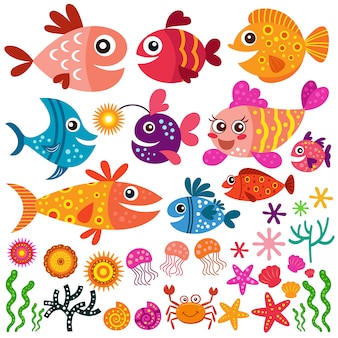 Ryby i kolekcja muszli