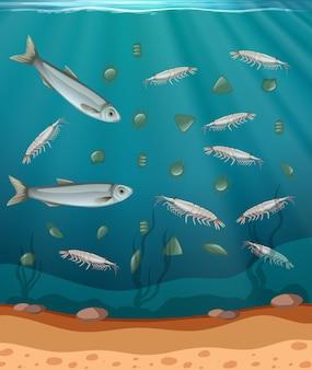 Ryby i plankton w wodzie
