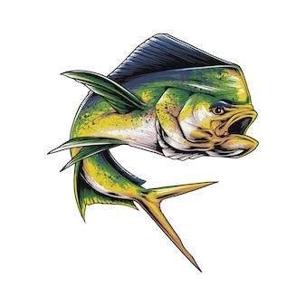 Ryby mahimahi