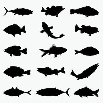 Ryby sylwetki