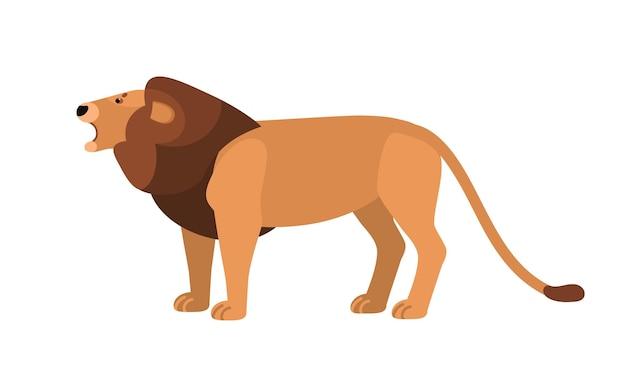Ryczący lew na białym tle. wspaniały dziki kot afrykański z grzywą. pełen wdzięku egzotyczne zwierzę drapieżne, mięsożerny ssak żyjący w afryce. ilustracja wektorowa w stylu cartoon płaski.