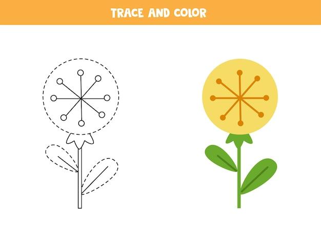 Rysuj po śladzie i pokoloruj ładny kwiat mniszka lekarskiego. gra edukacyjna dla dzieci. praktyka pisania i kolorowania.