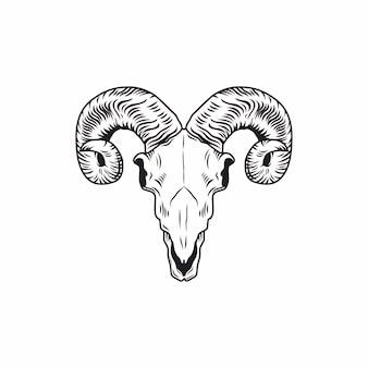 Rysunek czaszki ram. ręcznie rysowane ilustracji.