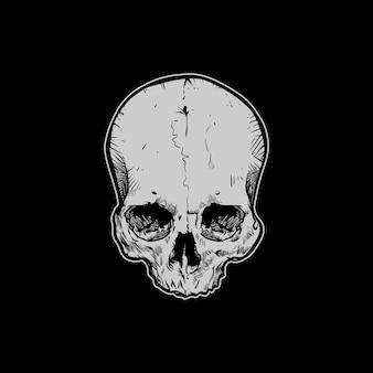 Rysunek głowy czaszki