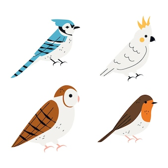 Rysunek kolekcji ptaków