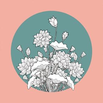 Rysunek kwiat lotosu