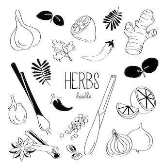 Rysunek odręczny stylizuje kilka ziół. zioła bazgroły.