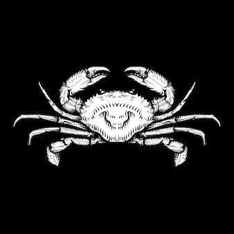 Rysunek rocznika kraba. ręcznie rysowane monochromatyczne owoce morza ilustracja.