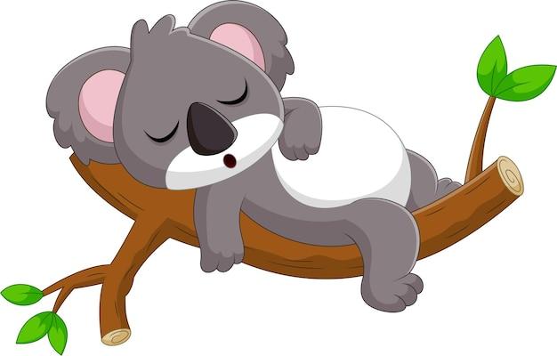 Rysunkowa koala śpi na drzewie