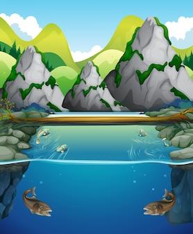 Rzeczna scena z ryba i górą