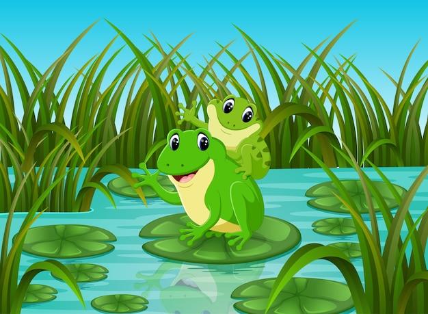 Rzeka scena z żabą na liściu szczęśliwy