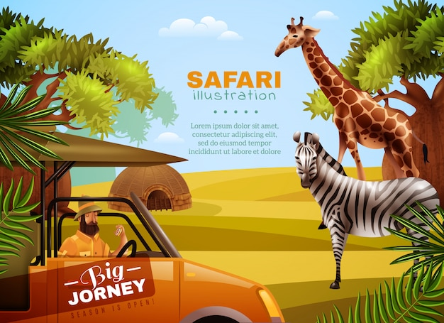 Safari kolorowy plakat