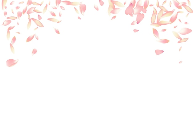 Sakura biały płatek wektor białe tło. różowy bezpłatny płatek lotosu karty. delikatny szablon płatek kwiatu. gratulacje z miękkiego płatka jabłka.
