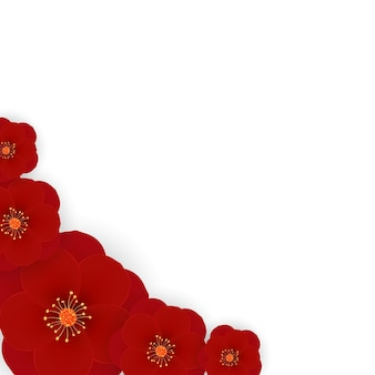 Sakura, kwiat śliwki