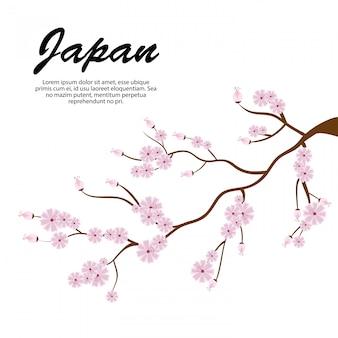 Sakura oddziały drzewo ikona japonia