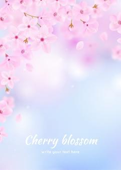 Sakura tło