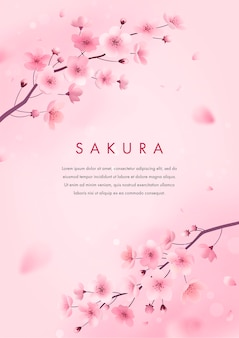Sakura z życzeniami