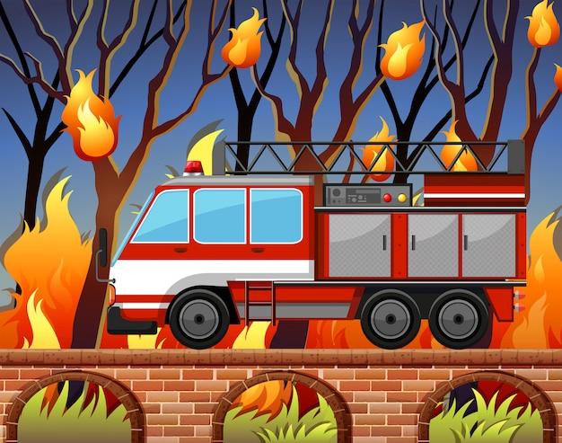 Samochód strażacki i dziki pożar w lesie