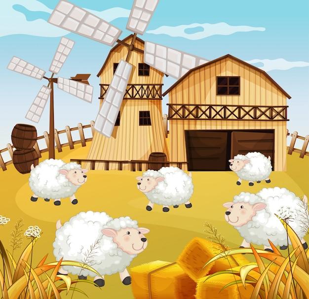 Scena farmy w przyrodzie ze stodołą, wiatrakiem i owcami