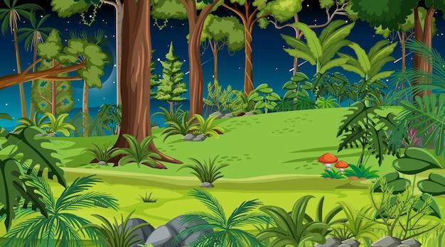 Scena krajobraz lasu w nocy z wieloma różnymi drzewami