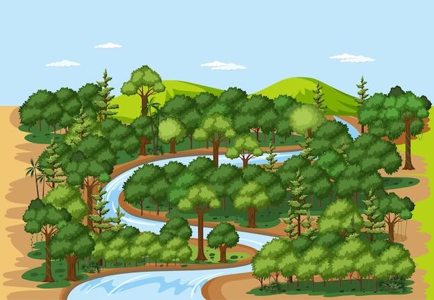 Scena krajobrazowa natura lasu