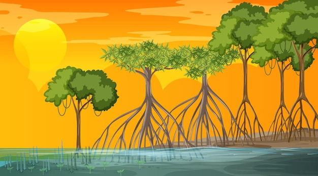 Scena krajobrazu lasu namorzynowego o zachodzie słońca