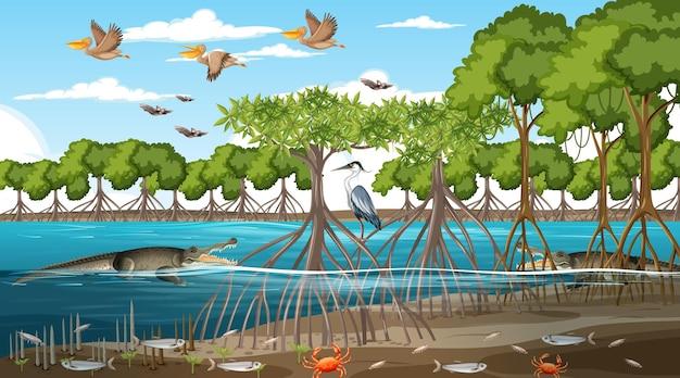 Scena krajobrazu lasu namorzynowego w ciągu dnia