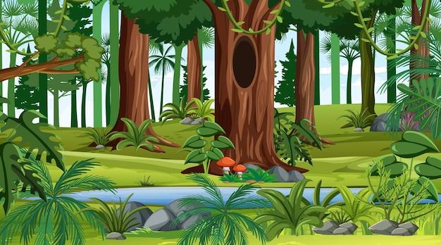 Scena krajobrazu lasu w ciągu dnia z wieloma różnymi drzewami