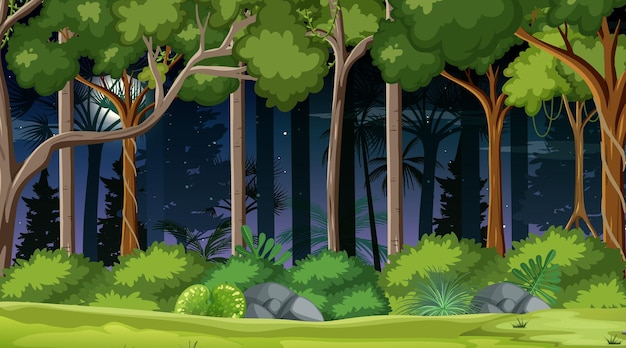 Scena krajobrazu lasu w nocy z wieloma drzewami