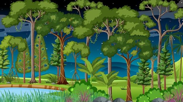 Scena krajobrazu lasu w nocy z wieloma różnymi drzewami