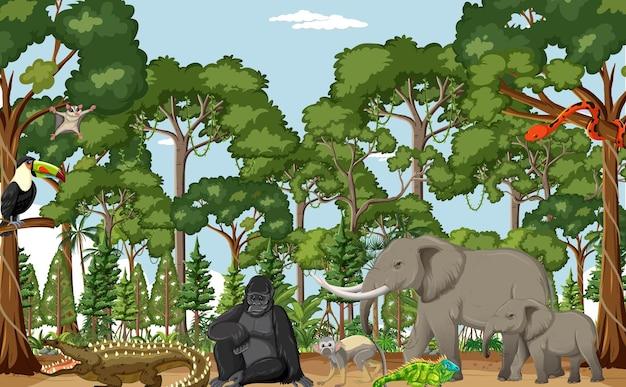 Scena lasu deszczowego z dzikimi zwierzętami