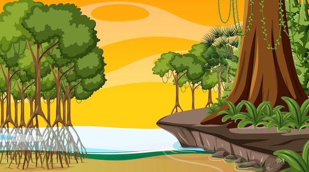 Scena natury z lasem namorzynowym o zachodzie słońca