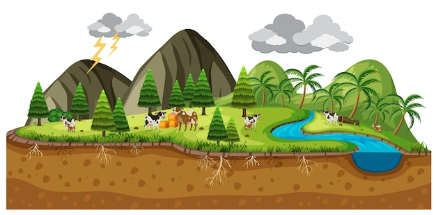 Scena piękny krajobraz z krowami